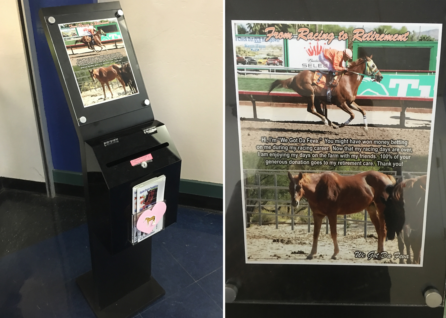 One of six lockboxes for collecting aftercare donations at Turf Paradise