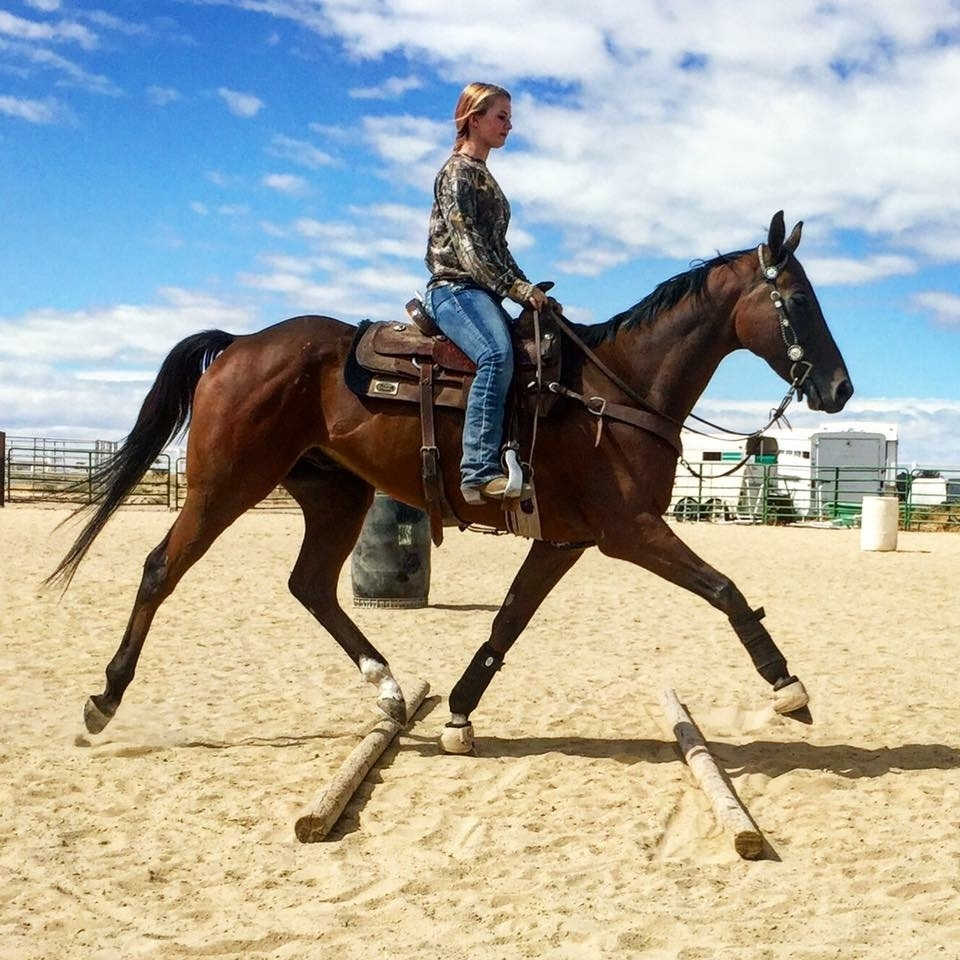Ashlee Wolf cross trains Fishinkonablue in western events when he's not at the track
