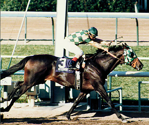 Santa Anita Experience Can T Hurt Shared Belief Keeping Pace