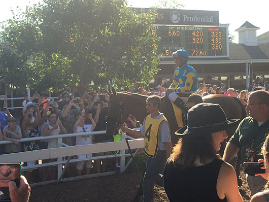 American Pharoah in Monmouth Park walking ring