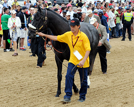 Preakness Finish