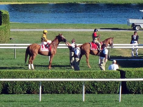 WISE DAN MINIATURE FIGURINE HAND PAINTED HORSE RACING JOCKEY SILKS